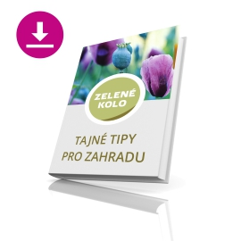 Stáhnout E-book