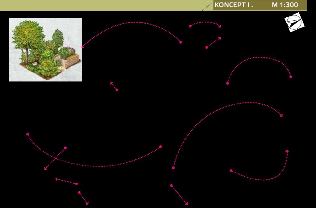 Obr.1- půdorysný koncept zahrady v Žalanech (1)