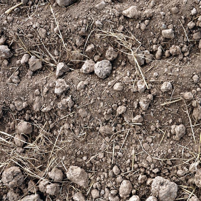 kamennitá půda