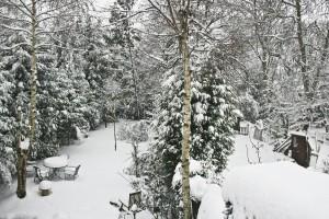 Zahrada pod peřinou