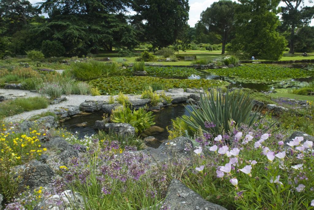 Ekologická zahrada