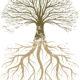 Říká se, že strom vysadí i malé dítě, se vzrostlým stromem je to horší 2. část
