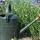 Jak hospodařit na zahradě s vodou? Víme to