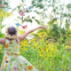 Krásné léto a jak v tomto období pečovat o zahradu